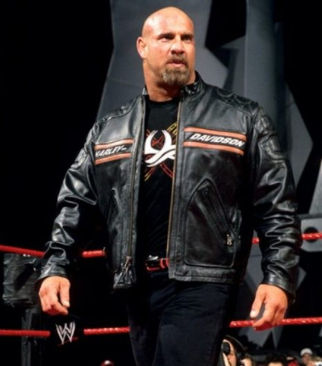 Hd Goldberg leather jacket